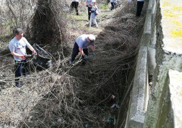 curatenie malul crisului 4 aprilie