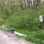 Gunoaiele abandonate pe marginea drumurilor judetene, curatate de angajatii CJ Bihor