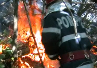 Pompierii avertizeaza! Atentie la picnicul de pe timpul minivacantei de 1 Mai