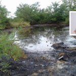 Florica Chereches: Dezastrul ecologic de la Derna ignorat de guvernul PSD-ALDE