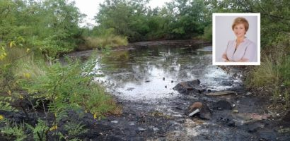 Florica Chereches: In Derna avem o adevarata bomba ecologica, iar institutiile statului nu iau masuri