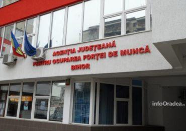 Rata somajului in Bihor in scadere in luna februarie – 1,34% , una dintre cele mai scazute din tara
