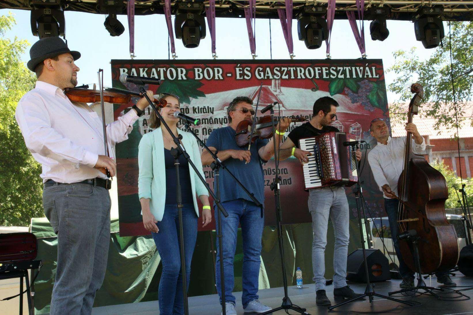 Festivalul vinului diosig bihor