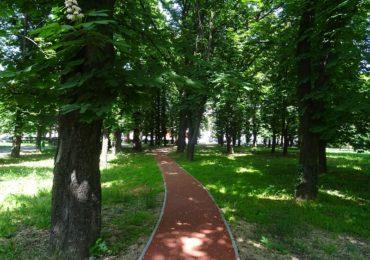 Suprafata verde a Oradiei este in crestere. Fiecare oradean beneficiaza de 26 mp de spatiu verde