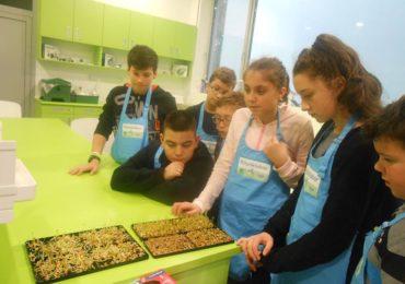 Proiectul Geosera Fondul stiintescu Oradea