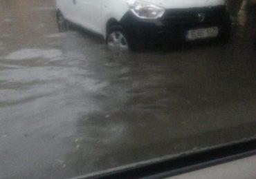 aleea rogerius inundata Oradea