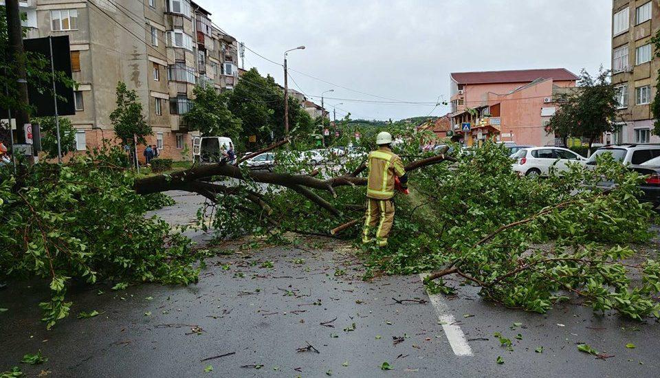 Furtuna puternica in Oradea. Copaci doborati, strazi inundate si masini avariate (FOTO)