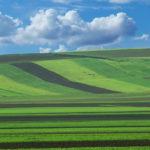 Prefectura Bihor: Comunicat privind Reglementarea juridica a dreptului de proprietate din Legea fondului funciar