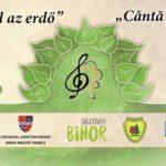 """""""Canta Padurea"""", concerte de muzica clasica in padurea de la Baile 1 Mai"""