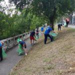 Curatenia spatiilor verzi din Oradea va fi facuta cu detinuti ai Penitenciarului Oradea