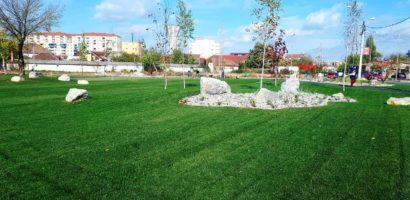 Oradea verde. Primaria pregateste proiecterea si executia a trei noi coridoare verzi