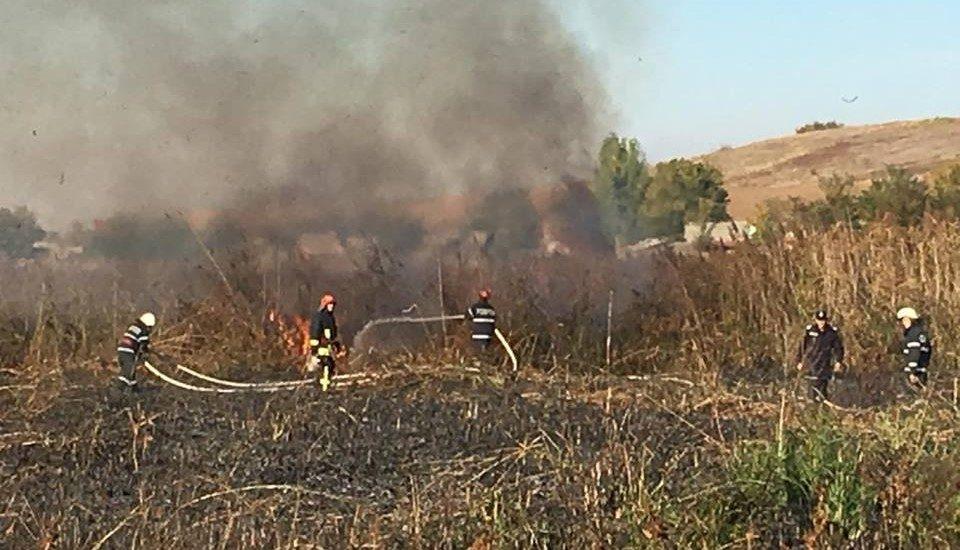 Inconstienta! Opt incendii de vegetatie in doar cateva ore, in mai multe localitati din judetul Bihor