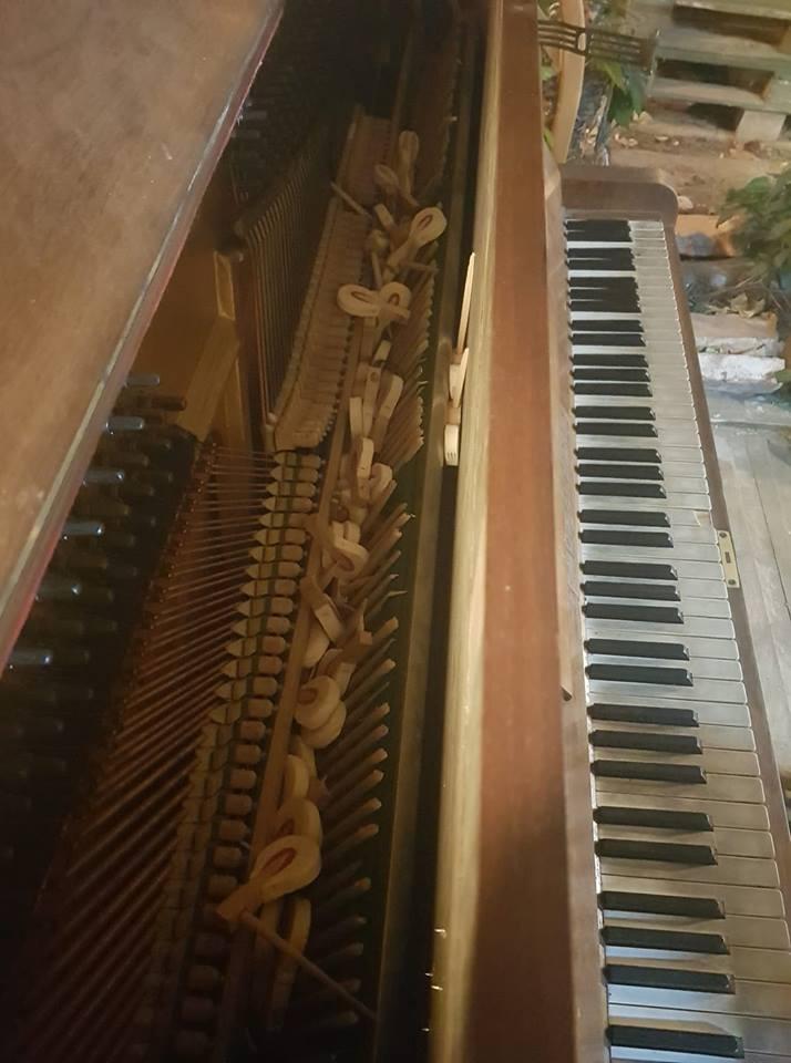 pianina oradea parcul lalelelor