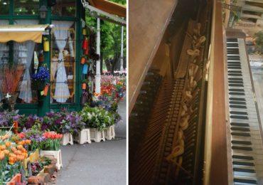 """Pianina din """"Parcul Lalelelor"""" (Parcul Libertatii) a fost vandalizata"""
