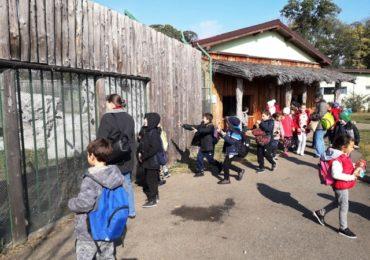 Scoala Altfel la Zoo Oradea
