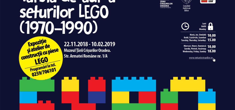 Expozitiile cu jucarii de la Muzeul Tarii Crisurilor, raman in Oradea pana pe 24 februarie