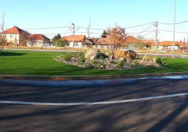teren viran oaza verdeata Oradea (2)