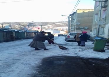 """""""Nu muncesti, nu primesti"""", proiect in cadrul caruia cei 157 de solicitanti de ajutor social desfasoara munca in folosul comunitatii, in Oradea"""