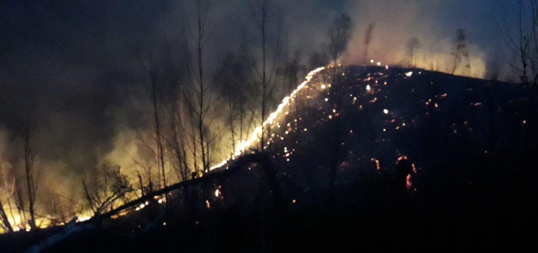 60 de hectare de terenuri virane si pasuni distruse in 11 incendii in judetul Bihor, intr-o singura zi