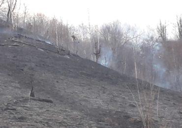 Incendiu Stația Ștei-Valea Aleu 8