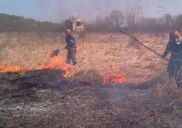 Noua incendii de vegetatie intr-o singura zi in judetul Bihor