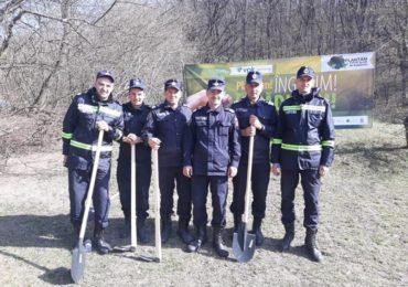 plantam fapte bune pompieri bihoreni (2)