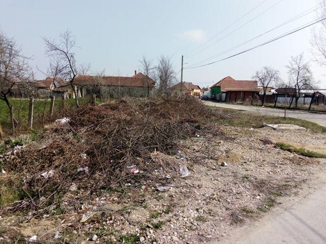 Centru comuna sambata (1)