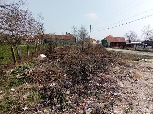 Centru comuna sambata (3)