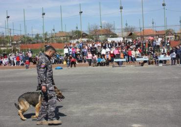 FOTO 9 ACTIVITATI PREVENTIVE SUPLACU DE BARCAU