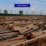 Aproape 62 de metri cubi de lemne, în valoare de peste 8.800 de lei, confiscați de polițiști de la o societate comerciala