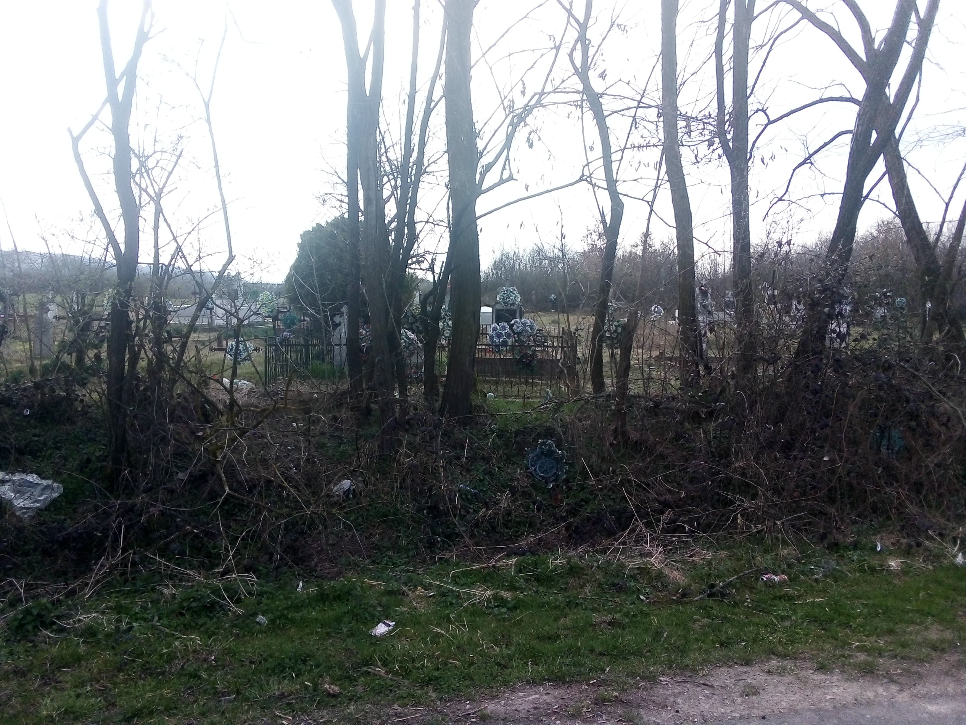 gunoaie cimitir sambata bihor (2)