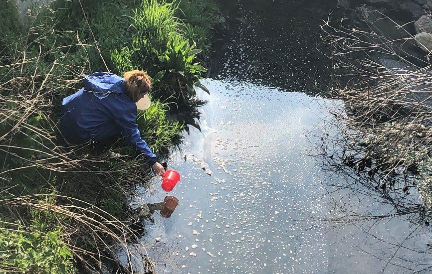 Rezultatele Laboratorului de Calitate a Apei au dus la concluzia ca in paraul Peta se deverseaza ape menajere