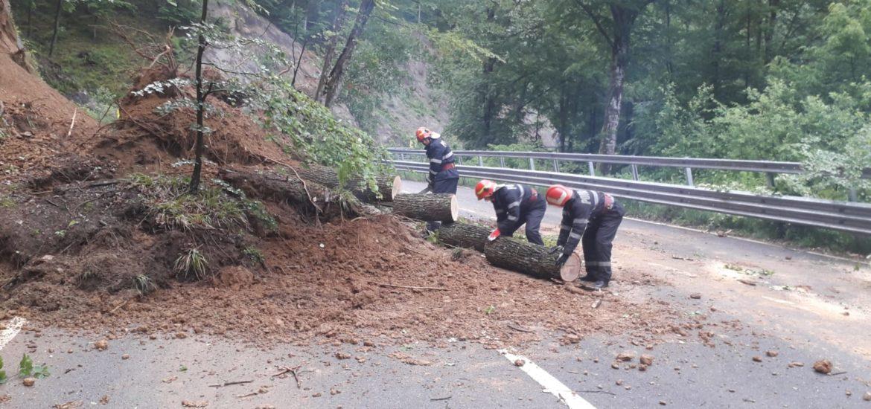 Un  copac si o mica alunecare de teren a blocat un sens de circulatie pe DN 1H, pe raza localitatii Pestis