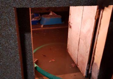 Inundatii campani Bihor 10.06 (4)