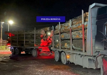 Aproape 75 de metri cubi de lemne de foc, expediate de o societate comercială, fără documente legale, confiscate valoric de polițiștii de la delicte silvice.