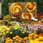 Oradea va avea o gradina botanica. Vezi unde va fi ea amenajata