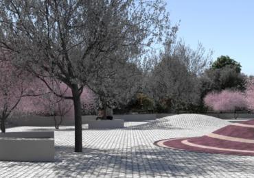 Piata Magnoliei Oradea (4)
