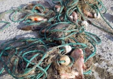 Atentie unde si ce pescuiti! Jandarmii bihoreni au amendat mai multe persoane care pescuiau ilegal