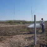 Florin Birta: Udam si ingrijim 3500 de puieti de arbori din Cartierul Tineretului