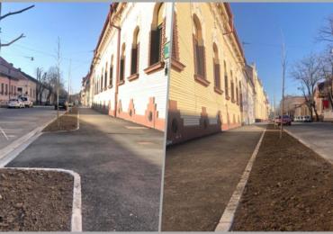 Aproape 400 de arbori ornamentali au fost plantati pe strada Mihai Eminescu din Oradea