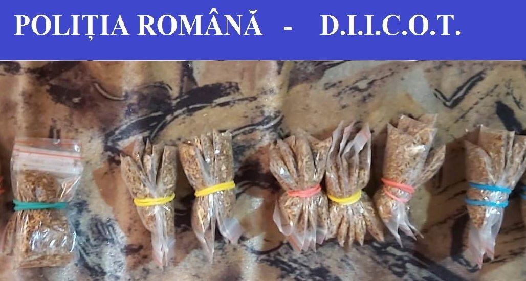 15 perchezitii in Oradea efectuate de procurorii DIICIOT au destructurat o retea de trafic de droguri de mare risc ce avea filiera in Romania si Ungaria