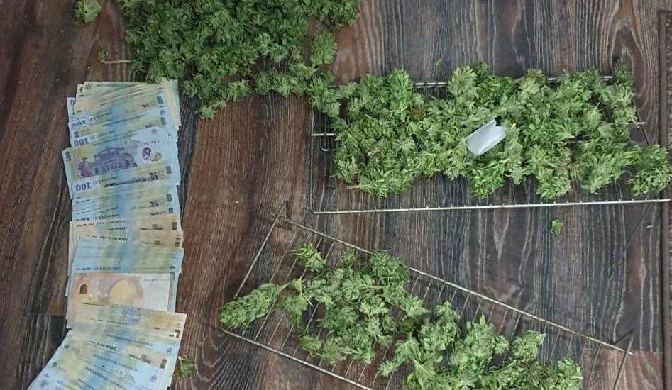 Traficant de droguri din Alesd, judetul Bihor, prins in flagrant de DIICOT Oradea