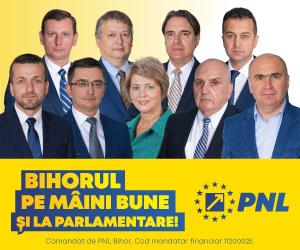Banner PNL Parlamentare