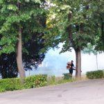 Continua actiunile de dezinsectie in Oradea, in perioada 11-20 august