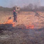 Peste 47 de hectare de maracinis, lastaris, dar si litiera unei paduri, arse in urma mai multor incendii in judetul Bihor, in cursul zilei de duminica