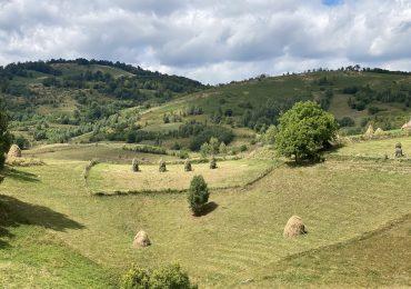 Proiecte pentru dezvoltarea turistică a Platoului Vașcău