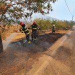 17 pompieri militari bihoreni ajuta la stingerea incendiilor din Grecia (Galerie Foto)